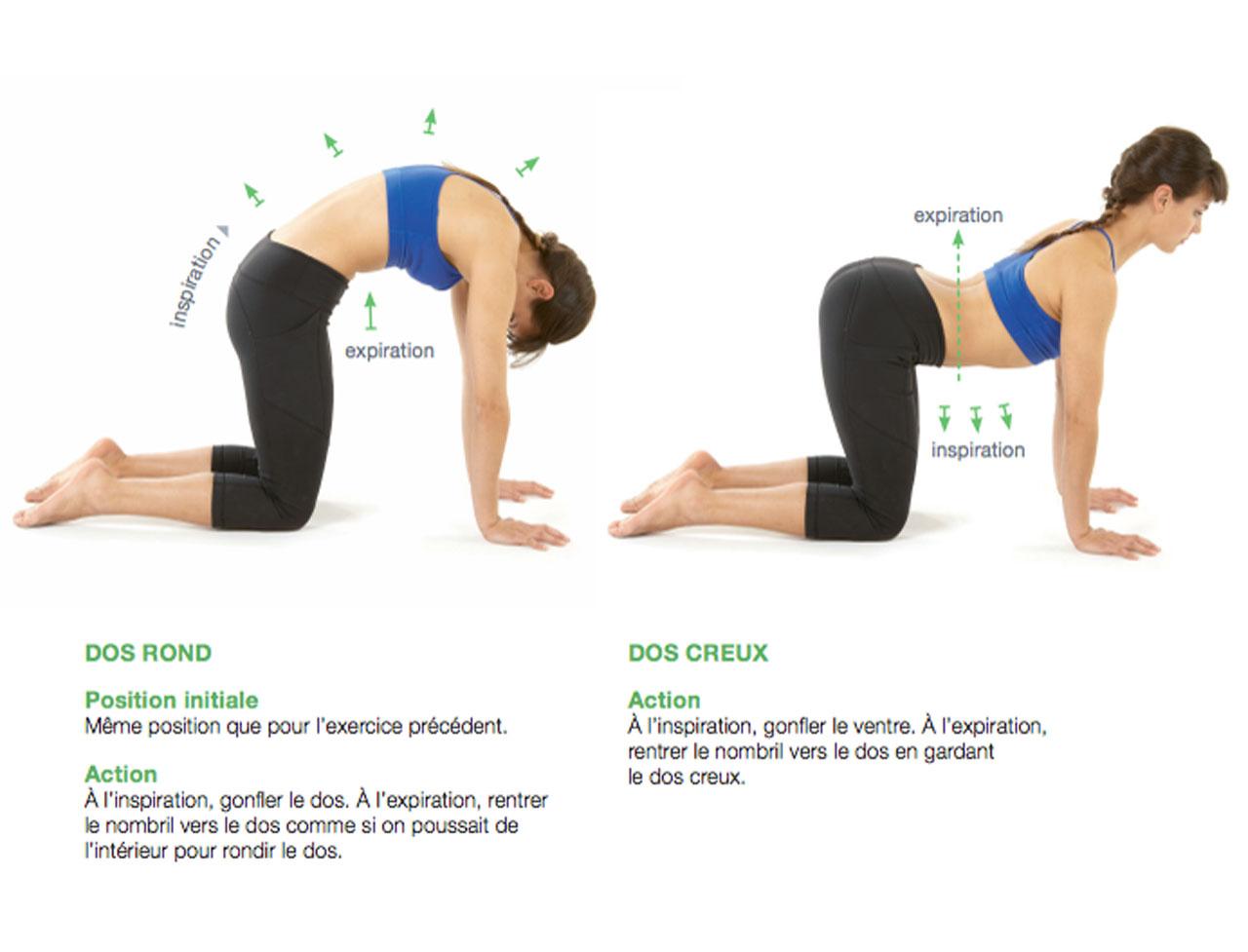 8 Exercices Pour Lutter Contre Le Mal De Dos Femme Actuelle
