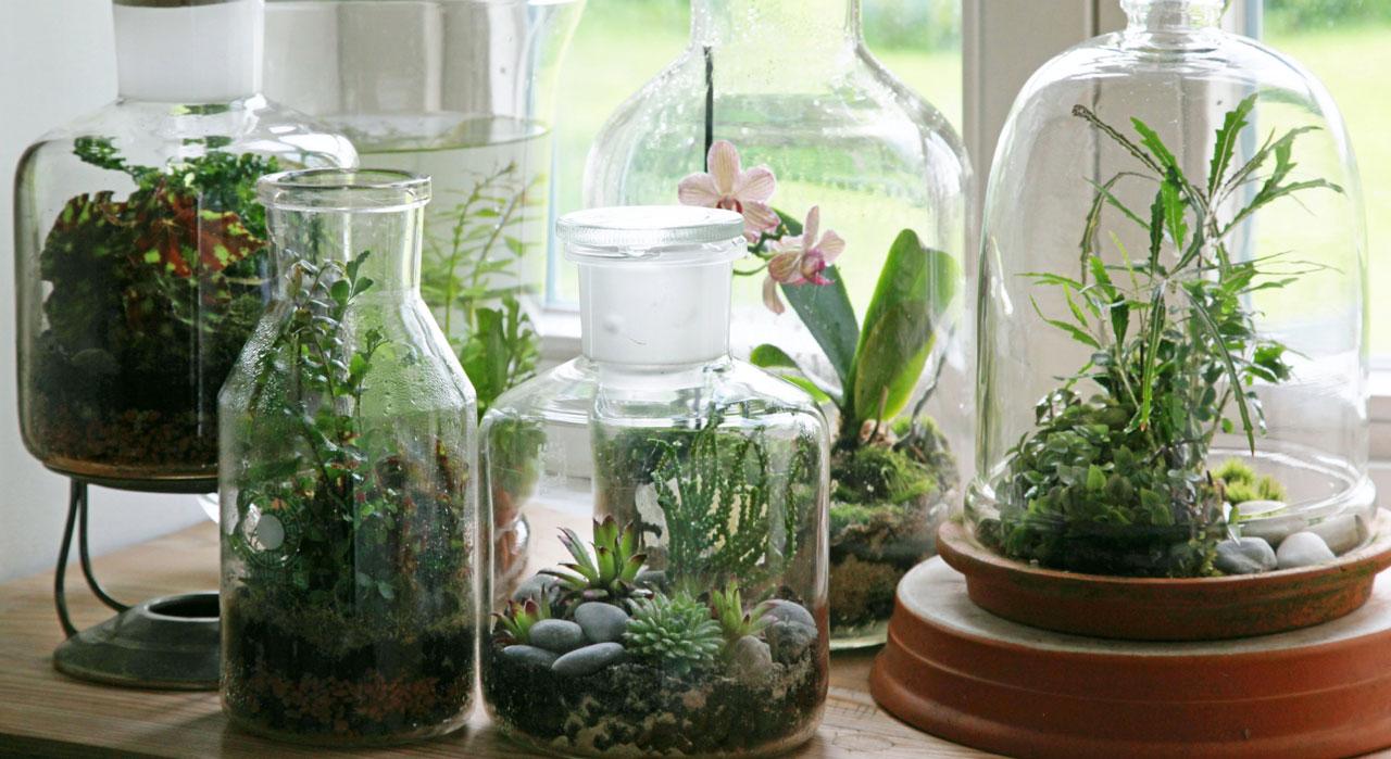 Nos Idees Creatives Avec Des Plantes Femme Actuelle