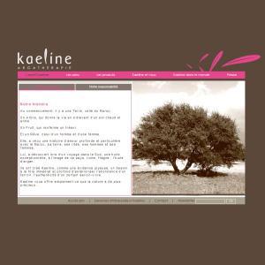 Un nouveau site internet pour Kaeline