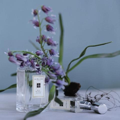 Wild Bluebell, un parfum terriblement anglais signé Jo Malone