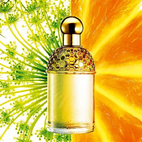 Guerlain présente ses Aqua Allegoria Saison 2007