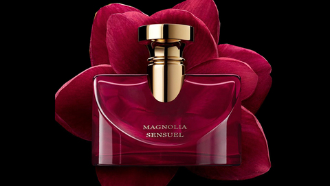 Magnolia Sensuel, nouvelle fleur du bouquet Splendida Bulgari