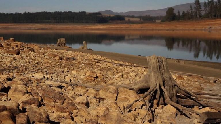 Au Cap, la pire sécheresse depuis un siècle