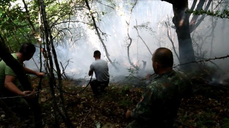 L'Albanie lutte contre les feux de forêt