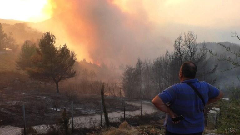 La Grèce lutte contre trois grands fronts de feu