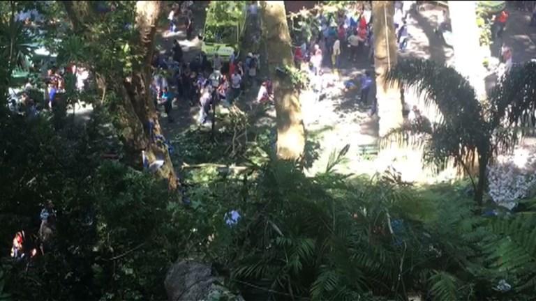 Portugal: la chute d'un arbre fait douze morts à Madère (2)