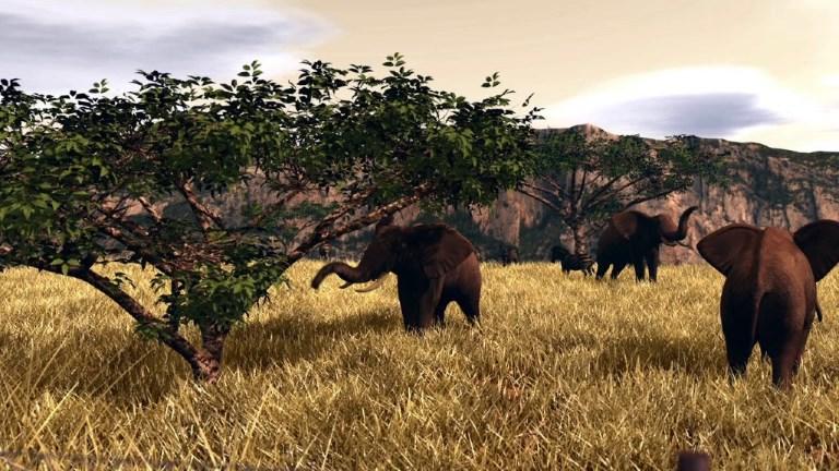 Le commerce de l'ivoire