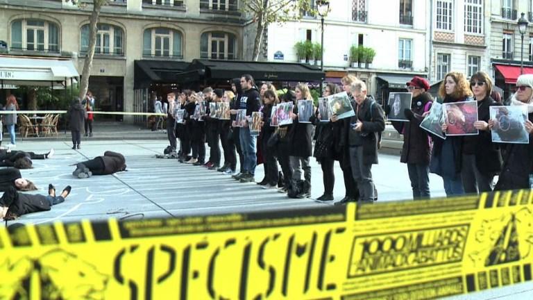 Action de PETA à Beaubourg pour promouvoir le véganisme