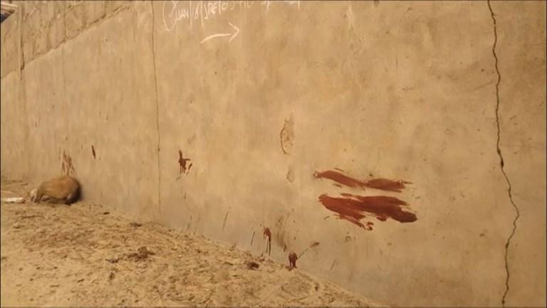 Nigeria: attaque kamikaze dans un village de l'Etat de Borno